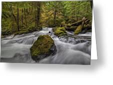 The Rock At Panther Creek Greeting Card