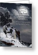 The Rock With Verse Greeting Card by Terry Kirkland Cook