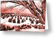 The Rocks In Winter Greeting Card