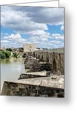 The Roman Bridge Of Cordoba  Greeting Card