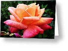The Rose Greeting Card