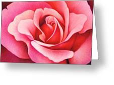 The Rose Greeting Card by Natasha Denger