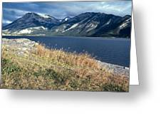 The Rugged Yukon Greeting Card