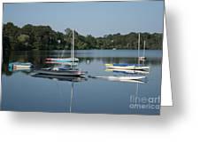 The Sailboats At Great Pond Greeting Card