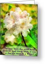 The Same Spirit Greeting Card
