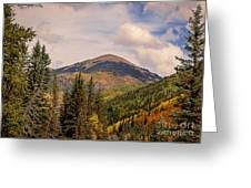 The San Juan National Forest Greeting Card
