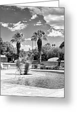 The Sandpiper Pool Bw Palm Desert Greeting Card