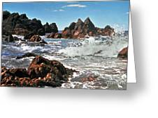 The Sea Abounds Greeting Card