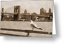 The Seagull Of The Brooklyn Bridge Vintage Look Greeting Card