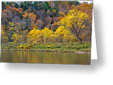 The Season Of Yellow Leaves Greeting Card
