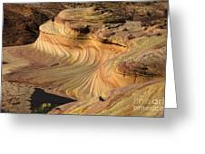 The Second Wave Arizona  3 Greeting Card