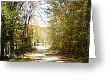 The Serene Path Greeting Card