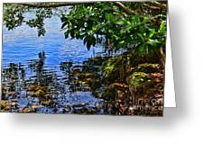 The Serenity Of Mind Greeting Card