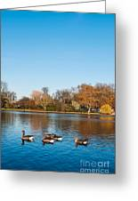 The Serpentine Ducks Greeting Card by Luis Alvarenga