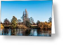 The Serpentine Seagulls Greeting Card by Luis Alvarenga