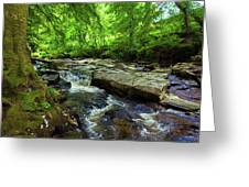 The Shankhill River Shortly Greeting Card