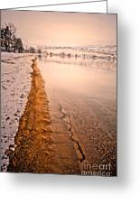 The Shore In Winter Greeting Card