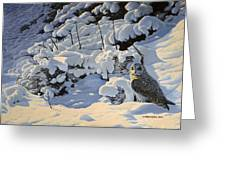 The Short Eared Owls Flew In Greeting Card