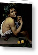 The Sick Bacchus, 1591  Greeting Card