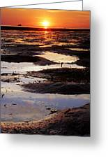 The Sky In The Mud At Low Tide Greeting Card