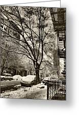 The Snow Tree - Sepia Antique Look Greeting Card