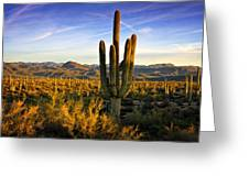 The Southwest Golden Hour  Greeting Card