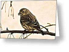 The Sparrow  Greeting Card