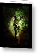 The Spirit Of The Wolf Greeting Card