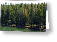 The Spokane River On Easter Sunday 2014 Greeting Card