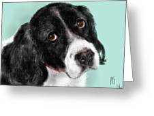 The Springer Spaniel Greeting Card