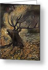 the Stag sitting in the grass oil painting Greeting Card