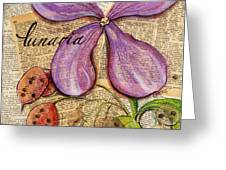 The Stages Of Money Plant Or Lunaria Greeting Card