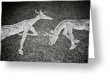 The Stags Greeting Card