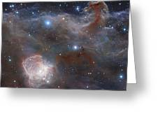 The Star-forming Region Ngc 2024 Greeting Card