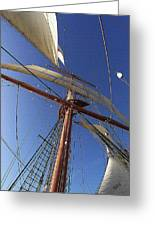 The Star Of India. Mast And Sails Greeting Card