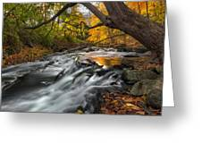 The Still River Square Greeting Card by Bill Wakeley