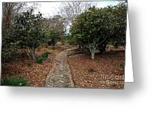 The Stone Path Greeting Card