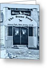 The Stone Pony Cool Greeting Card