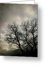 The Storm Greeting Card by Lucy D