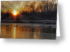 The Sun Also Rises Greeting Card
