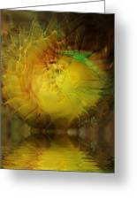 The Sun Faces Greeting Card
