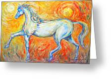 The Sun Horse Greeting Card