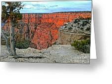 The Sun Shines On The Canyon Greeting Card