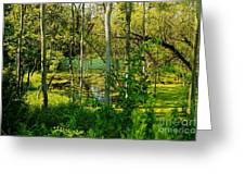 The Swamp Greeting Card