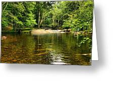 The Swimming Hole Greeting Card