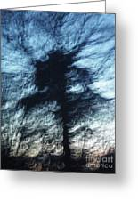 The Swirly Tree Greeting Card by Catherine Eager
