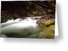 The Tananamawas River Greeting Card