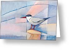 The Tern Greeting Card
