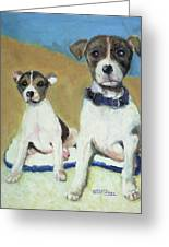 The Terriers Greeting Card