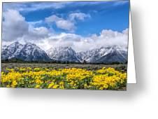 The Teton Mountain Range In The Spring Grand Teton National Park Greeting Card